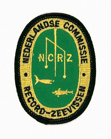 NCRZrecordbutton