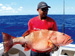 Black saddled coral grouper