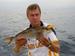 Middellandse zee Amberjack